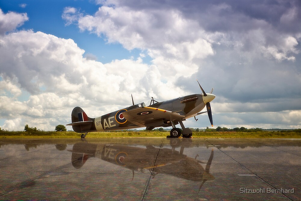 "Spitfire MK V ""City of Winnipeg"" by Delfino"