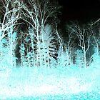christmas wrk by Eric langley