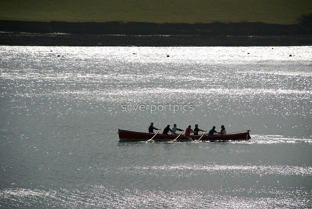Silhouette of Gig boat racers, St Mawes, Cornwall by silverportpics