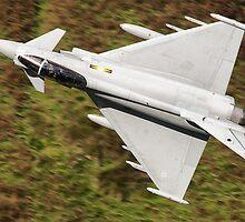 Eurofighter Typhoon Low Level by David Ellins