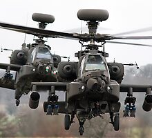 Apaches  by David Ellins