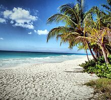 Maxwell Beach, Barbados by Polly Peacock