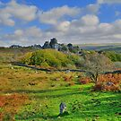 Dartmoor: Heading to Vixen Tor by Rob Parsons