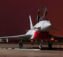 Eurofighter Typhoon  by David Ellins
