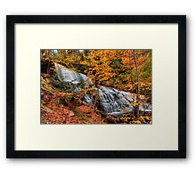 Mohawk Falls Among The Autumn Leaves Framed Print