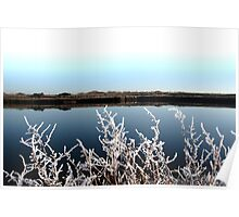 frosty branches in snow against cold blue sky and river Poster