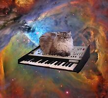 Cat in space sitting on a keyboard by artkid