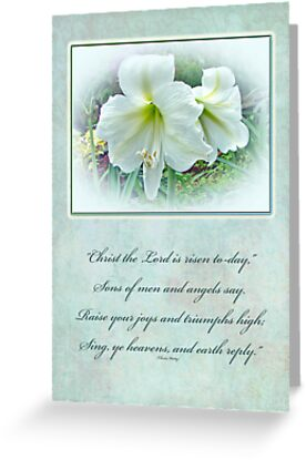 Easter Greeting Card - White Amaryllis by MotherNature