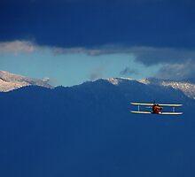 Flying Through The Wild Blue Yonder by CarolM