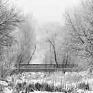 winter bridge by irishgirl7