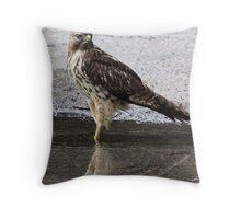 I, Am A Hawk Throw Pillow