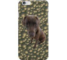 Chocolate Lab Case iPhone Case/Skin