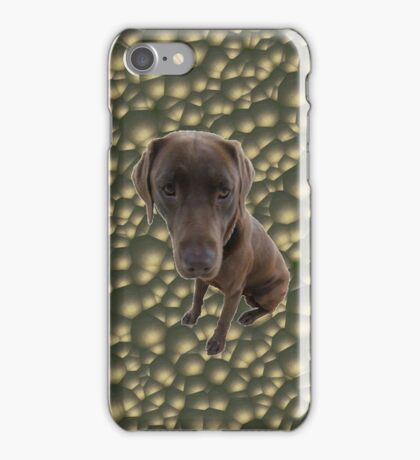 Chocolate Lab Case iPhone Case/Skin