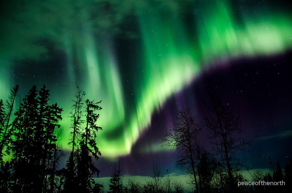Nov 13th/12 Auroras #3 by peaceofthenorth