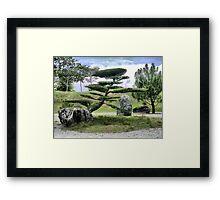 In the Garden of Japan (2) Framed Print