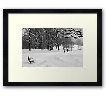 a very white winter walk Framed Print