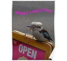 Kookaburra Merry Christmas 2 Poster