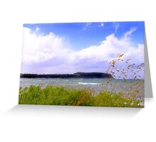 Table Cape Greeting Card