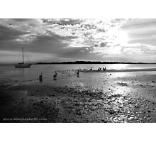 Pelicans on Low Tide Photographic Print