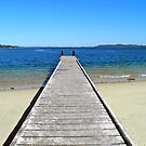 Nelson Jetty by Michelle Ricketts