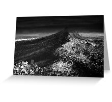 Purple and Orange Rages on in Black and White Greeting Card