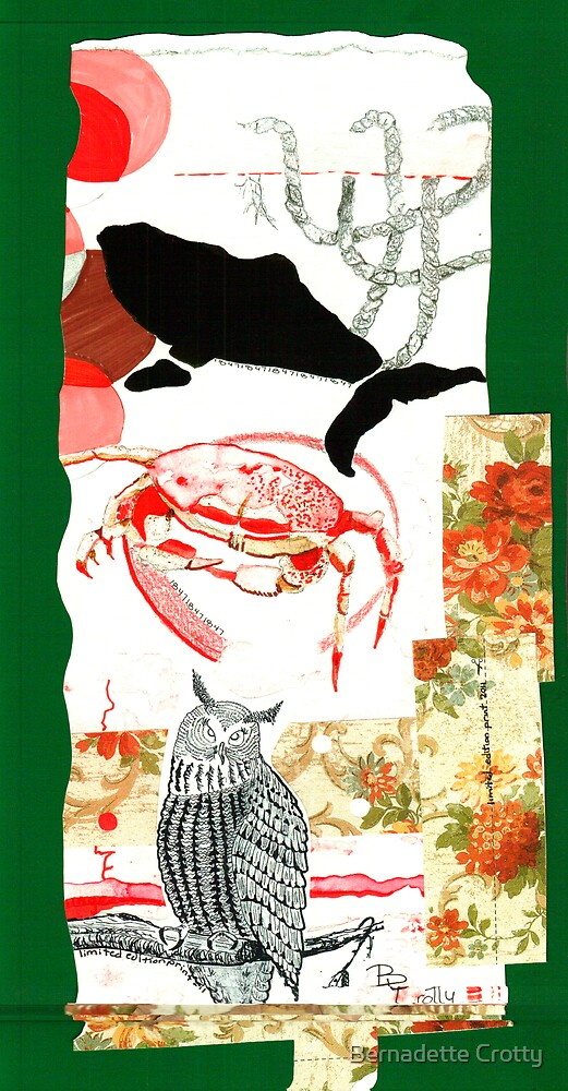Chi Omowl by Bernadette Crotty