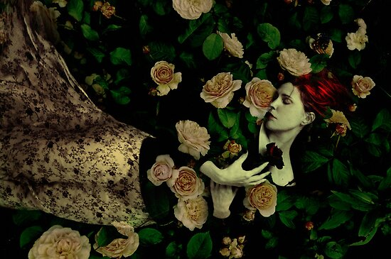 Go not too near a House of Rose by Marta Orlowska