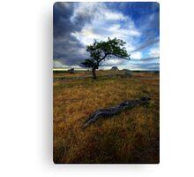 Tree Envy Canvas Print