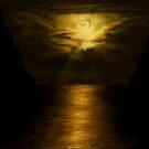 Moonlight - Wallpaper by SophiaDeLuna
