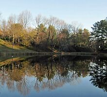 The Pond at Wolftrap ***click on image*** by Bine