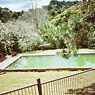 Green pool by Ben Reynolds