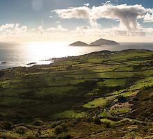 Ireland - Irish Landscape by Stephen Cullum