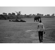 Walking with the elephants Photographic Print