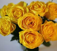 Yellow Roses by Robert Worth