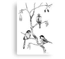 Small Garden Birds Canvas Print