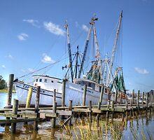 Marina At Georgetown by Kathy Baccari