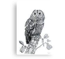Tawny Owl Canvas Print