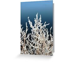 icy twigs and branches in snow against blue Greeting Card