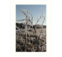 icy twigs and grass in snow against blue river and sky Art Print