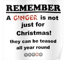 Ginger is not just for Christmas Poster