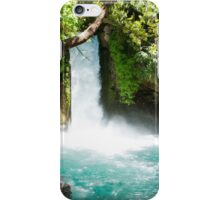 Hermon Stream Nature reserve (Banias) Golan Heights Israel iPhone Case/Skin