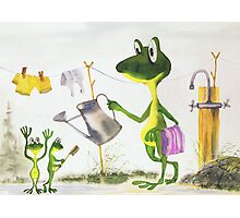 All about Frogs 8,  Summer Photographic Print