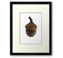 Anime Acorn Framed Print