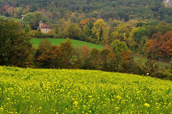 Autumn in the french countryside by Patrick Morand