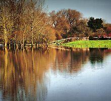 Flood Plain by naturelover