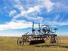 Prairie Fossil by Greg Belfrage