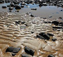Rugged Beauty, Northern Tasmanian Coastline. by kaysharp