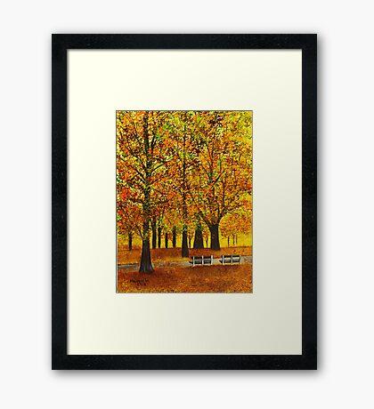 Golden park II Framed Print