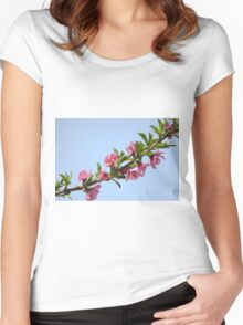 Pink blossoms on a Peach tree in an orchard.  Women's Fitted Scoop T-Shirt