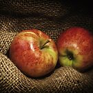 Red Apples by Ellesscee